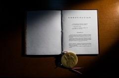 T2 constitution